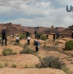Canyonland and Arches National Parks