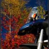Fall around Pemberton.